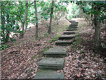 TM4077 : Steps to Holton Mill by Evelyn Simak