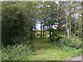 TM3872 : Footpath to Sibton Green & Peasenhall Road by Adrian Cable