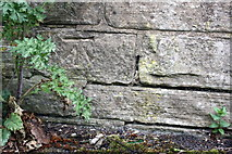 SE1039 : Benchmark on wall at entrance to Bingley Railway Tunnel by Roger Templeman