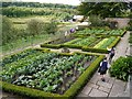 NZ2254 : Vegetable Garden, Pockerley Old Hall, Beamish Museum by Andrew Curtis