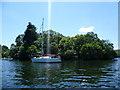 SD3889 : Blake Holme Island - Windermere by Anthony Parkes
