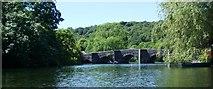 SD3686 : Newby Bridge by Anthony Parkes