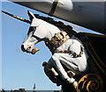 NO4130 : HMS Unicorn Figurehead by Anne Burgess