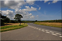 SX0877 : North Cornwall : The B3266 by Lewis Clarke