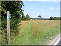 TM4167 : Footpath to Moor Road by Adrian Cable