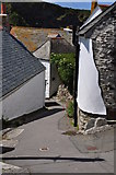 SW9980 : Port Isaac : Rose Hill by Lewis Clarke