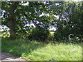 TG0525 : Footpath to Peddlars Turnpike by Adrian Cable