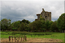 N5712 : Castles of Leinster: Lea, Laois (1) by Mike Searle