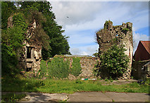 S0495 : Castles of Leinster: Curralanty, Offaly by Mike Searle