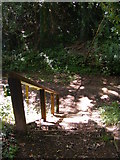 TG0723 : Steps down to Marriott's Way footpath by Adrian Cable