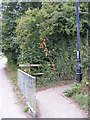 TM3877 : Swan Lane footpath by Adrian Cable