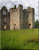 N8767 : Castles of Leinster: Athlumney, Meath (2) by Mike Searle