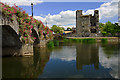 S6965 : Castles of Leinster: Leighlinbridge, Carlow (1) by Mike Searle