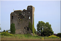 R9493 : Castles of Munster: Drumnamahane, Tipperary (2) by Mike Searle