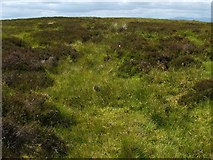 NS4479 : Ancient trackway by Lairich Rig