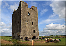 N5544 : Castles of Leinster: Rattin, Westmeath (2) by Mike Searle