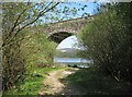 NX6469 : Stroan Viaduct by Ann Cook