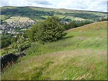 SE0125 : Field next to Hebden Royd Footpath 59, Mytholmroyd by Humphrey Bolton
