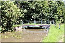 TL3707 : Bridge over the new River, Broxbourne, Hertfordshire by Christine Matthews