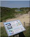 SZ1790 : Quarry Pond, Hengistbury Head by John Goldsmith
