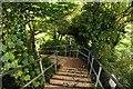 SX0552 : Steps to Crinnis Beach by Steve Daniels