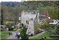 SU9949 : Guildford Castle by N Chadwick