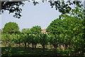 TQ7042 : Castlemaine Oast by N Chadwick