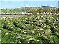 NX5551 : The Mossyard Millennium Labyrinth by Ann Cook