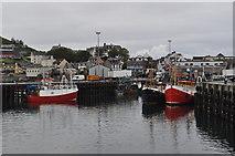 NM6797 : Mallaig Harbour by Ashley Dace