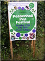 TM3569 : Sign promoting the Peasenhall Pea Festival by Adrian Cable