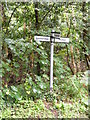 TM4466 : Roadsign on Chapel Road by Geographer