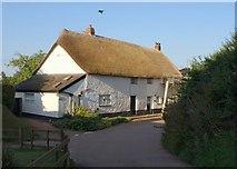 ST0215 : Thatched cottages, Whitnage by Derek Harper