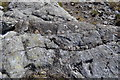 NM3897 : Splitting Dyke by Ashley Dace