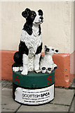 NT4728 : A model charity sheep dog in Selkirk by Walter Baxter