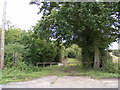 TM4163 : Field entrance off Abbey Lane (U2418) by Adrian Cable