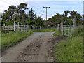 SD7024 : Gates by David Dixon