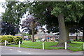 NO1040 : Play park at the Green in Spittalfield by Mike Pennington