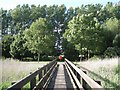 ST5484 : Footbridge over a reedbed  by Robin Stott