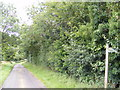 TM4266 : Hawthorn Road & the footpath to Hawthorn Road by Adrian Cable