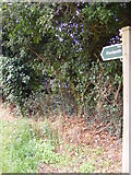 TM4160 : Signpost of the footpaths to Church Farm & B1069 Snape Road by Geographer