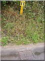 TM4160 : Fire Hydrant in Grove Road, Friston by Adrian Cable