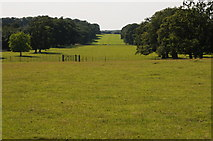 SP9532 : View to Wayn Close, Woburn Park by Philip Halling