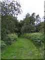 TM4458 : Sailors Path footpath to Priory Road by Adrian Cable