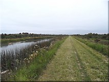 N6331 : Grand Canal South of Edenderry, Co. Offaly by JP