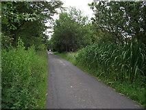 SD7656 : Longtons Lane, Tosside by Philip Platt
