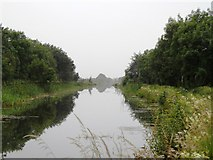 N5131 : Grand Canal in Toberdaly, Co. Offaly by JP