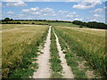 TQ3011 : Sussex Border Path north of the Chattri by Paul Gillett