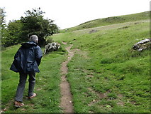 N5877 : Path leading to the Loughcrew Tombs by Eric Jones