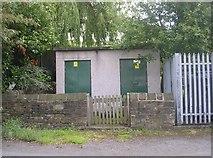 SE1537 : Electricity Substation No 255 - Hall Lane by Betty Longbottom