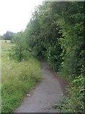 SE1537 : Footpath - Wrose Brow Road by Betty Longbottom